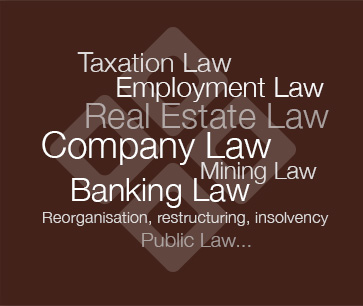 D&S Legal Law Firm